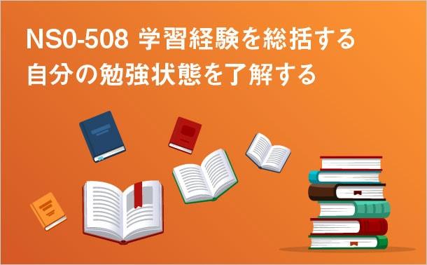 NS0-508学習経験