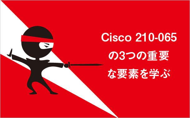 Cisco 210-065