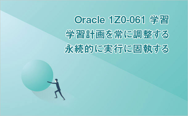 Oracle 1Z0-061 学習