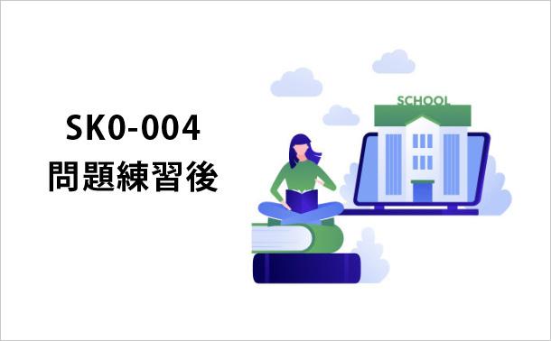 SK0-004問題実践の過程
